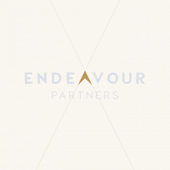 Endeavour Partners