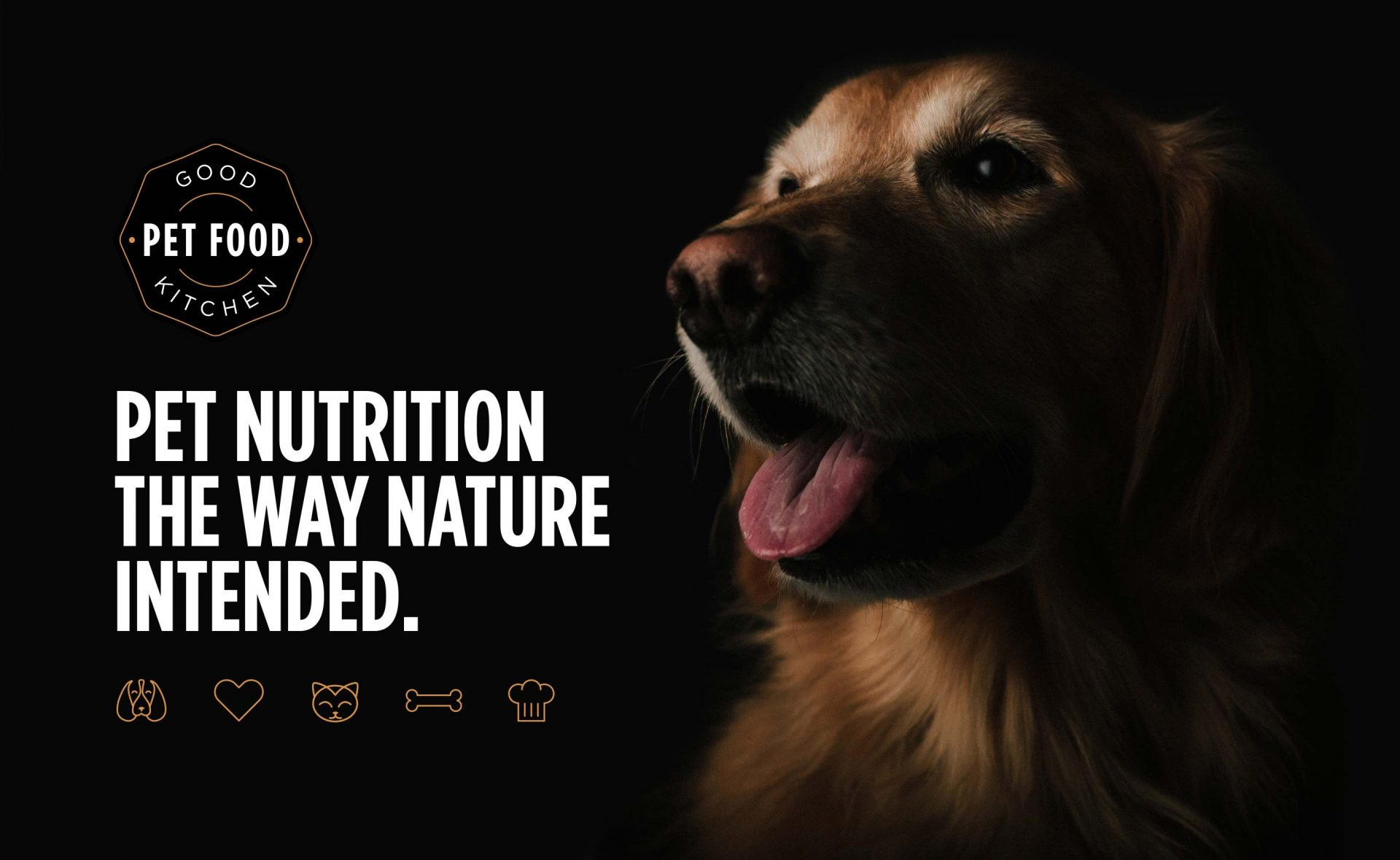 pet com case study Case study improved call resolution & employee satisfaction petco is a leading pet specialty retailer that focuses on nurturing powerful relationships between people and pets.
